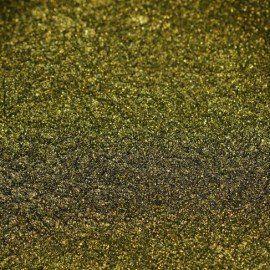 01 SemiFlash Chameleon Bee Mystery